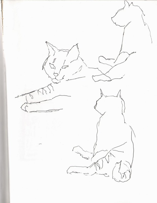 Gesture Sketches of Mabel